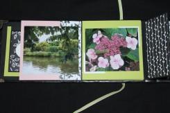 2018-05-album-automne (14)b