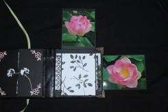 2018-05-album-automne (8)b