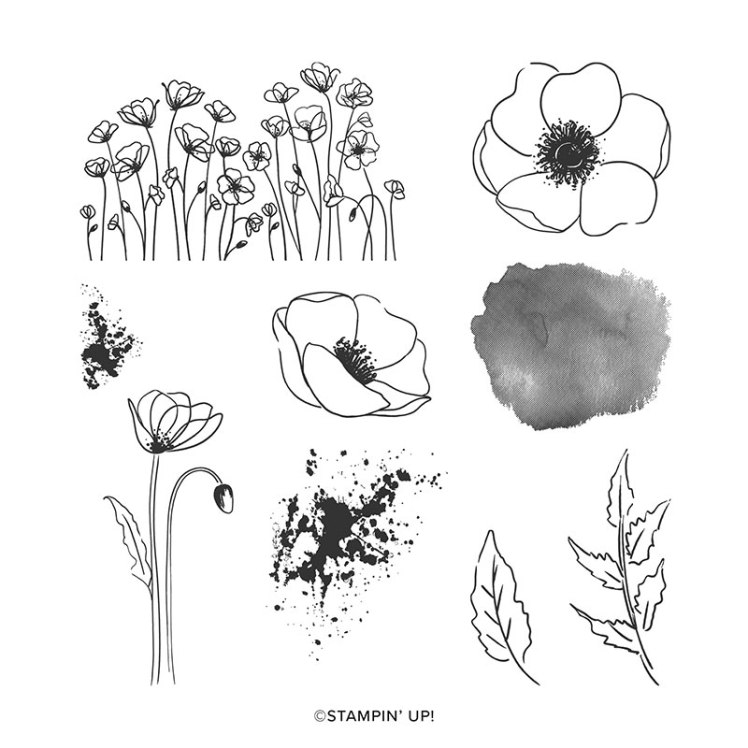 tampon-painted-poppies